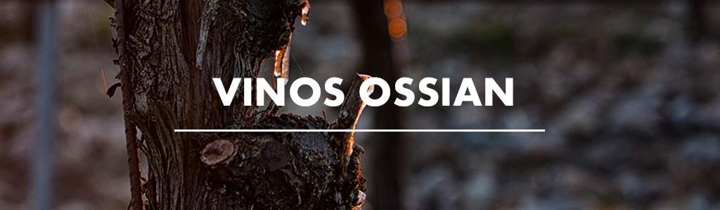 Ossian Vinos y Vides