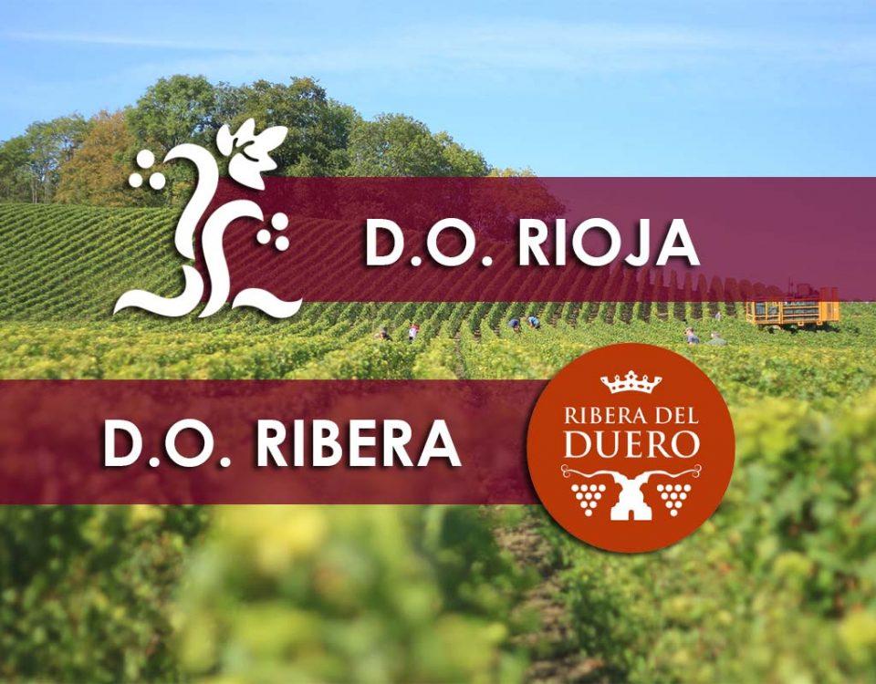 Rioja y Ribera del Duero, las dos mayores D.O. de España